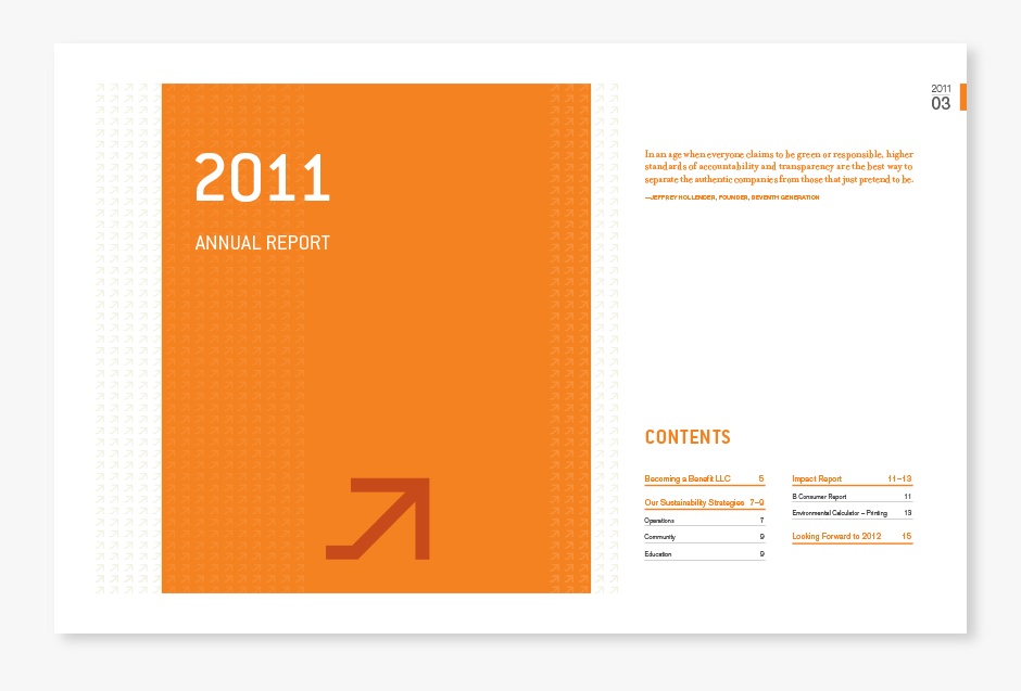 substance151 annual report