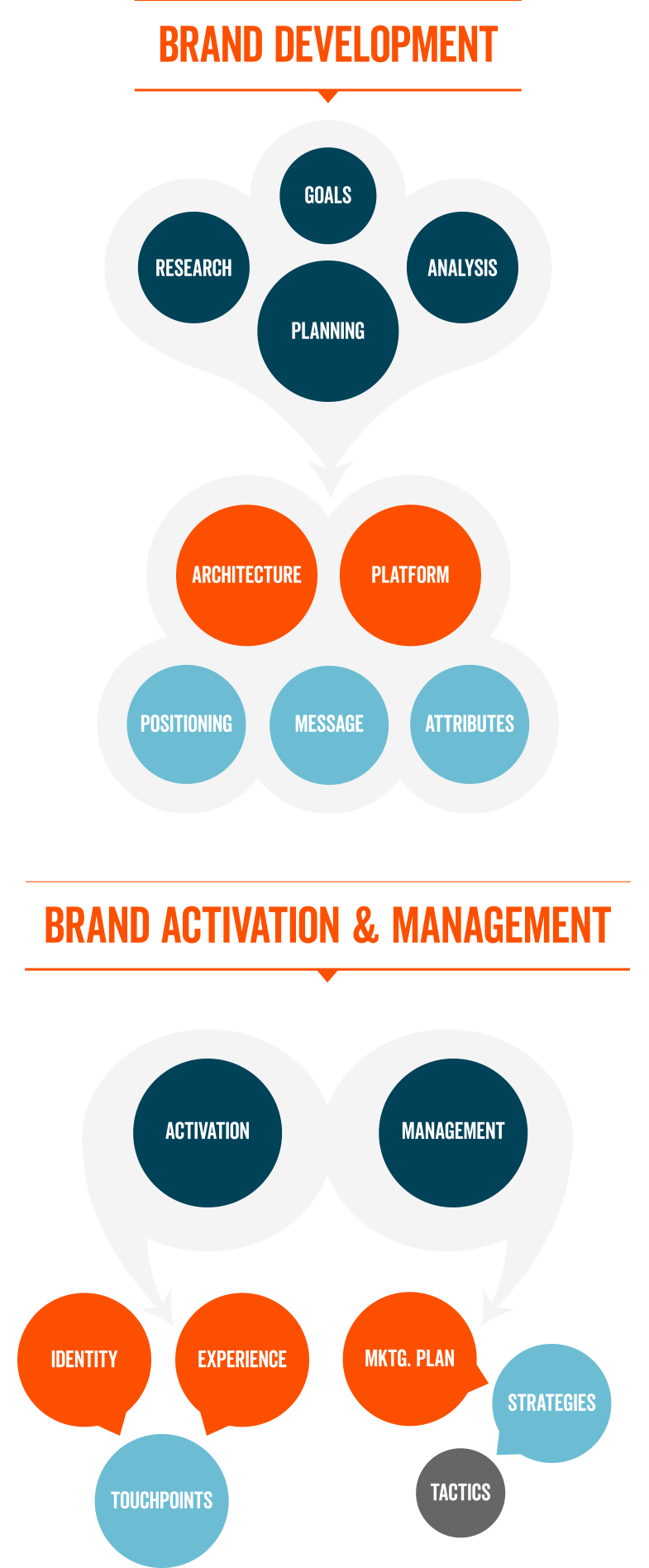 Brand development brand activation and brand management diagram